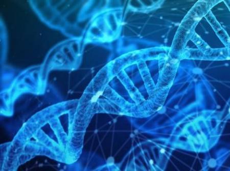 盈科资本布局基因治疗领域,投资安龙生物